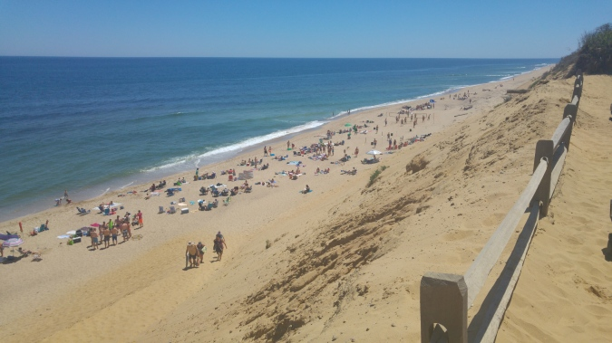 One of the many beaches in Cape Cod.