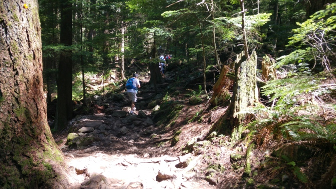 "The ""Grouse Grind"" up Grouse Mountain, harder than it looks!"